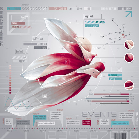 Vector flower infographic set with timeline report template