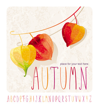 Autumn composition with Chinese lanterns flowers (another name - cape gooseberry or Physalis) for events and sales on grunge background and alphabet Illustration