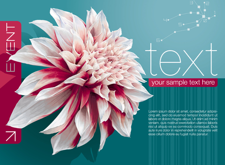 business card design: Vector abstract booklet cover with dahlia flower on sea-green background Illustration