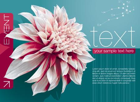 Vector abstracte boekje cover met dahlia bloem op de achtergrond zeegroen Stock Illustratie