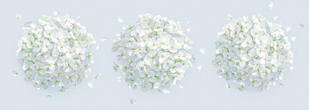 Tree vector white Hydrangea flowers and Apple blossom with flying petals in watercolor style  for 8 March, wedding, Valentines Day,  Mothers Day, sales and other seasonal events.