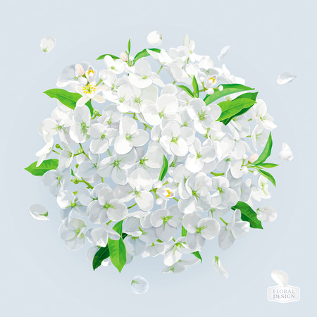 Modern floral vector art - luxurious white Hydrangea and Apple blossom in watercolor style for 8 March, wedding, Valentines Day,  Mothers Day, sales and other spring and summer seasonal events. Ilustração