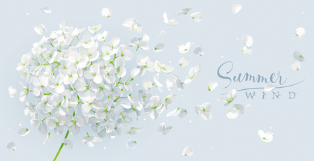 Summer wind - luxurious white vector Hydrangea flower and Apple blossom with flying petals in watercolor style for 8 March, wedding, Valentines Day,  Mothers Day, sales and other seasonal events. Ilustração