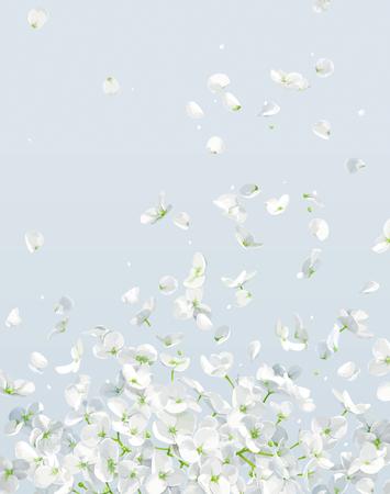 Vento estivo - lussuoso fiore bianco ortensia vettoriale e melo con petali volanti in stile acquerello per l'8 marzo, matrimonio, San Valentino, festa della mamma, saldi e altri eventi stagionali