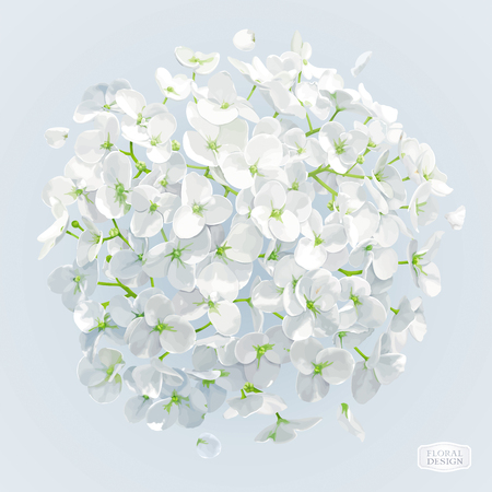 Modern floral vector art - luxurious white Hydrangea and Apple blossom in watercolor style for 8 March, wedding, Valentines Day,  Mothers Day, sales and other spring and summer seasonal events. Illustration