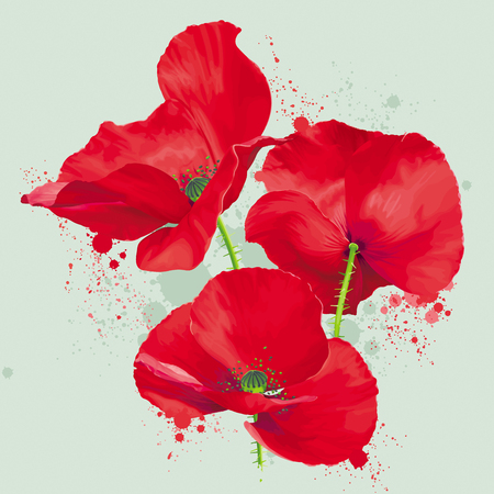 Luxurious bright red vector Poppy flowers drawing in watercolor style with blots and splashes  for floral decoration Ilustração
