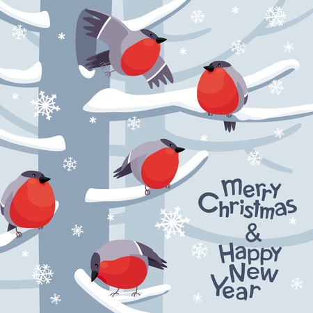 Funny red Bullfinches. Vector Christmas image. Winter birds for Christmas decoration, posters, banners, sales and other winter events Banco de Imagens - 127075592