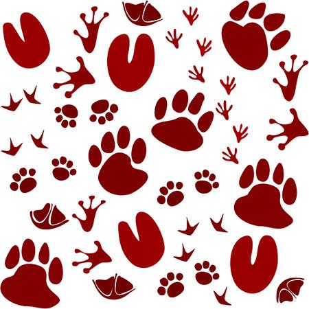 Animal tracks Ilustrace