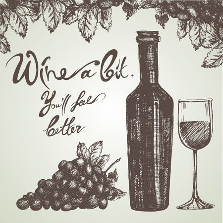 Wine sketch and vintage illustration Vector