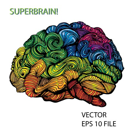 Bright sketchy doodles about brain with colored elements