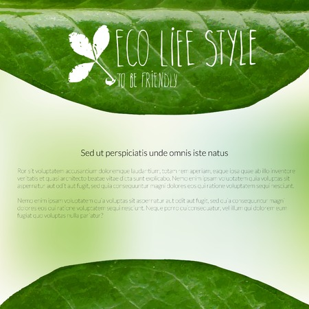Banner with green leaves and doodles Vector