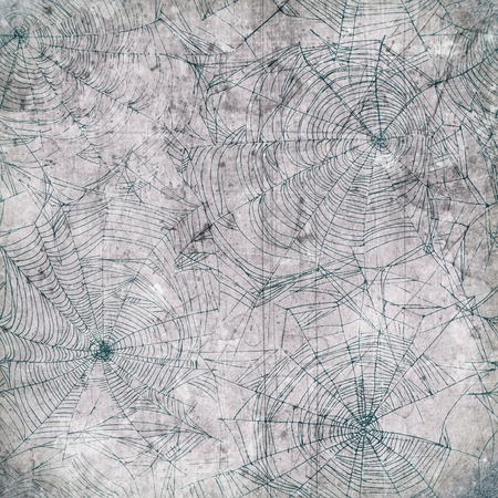 cobweb: Spider web background - cobweb dirty and scratched texture