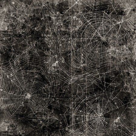 spider web background: Spider web background - cobweb dirty and scratched texture