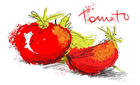 picada: Vector ilustración boceto de tomate - tomate y ensalada rebanada aislados sobre fondo blanco