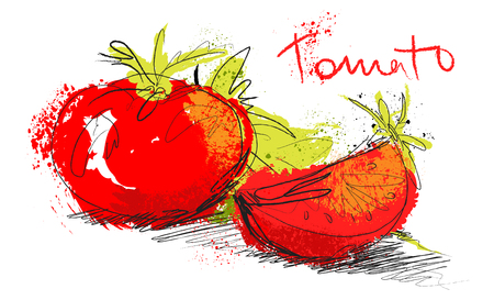 Vector sketch tomato illustration - slice tomatoes and salad isolated on white background