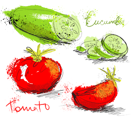 Cucumber and tomatoes slices isolated on white background, art hand draw style with ink texture