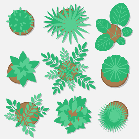 Collection of plants for web design, flat style