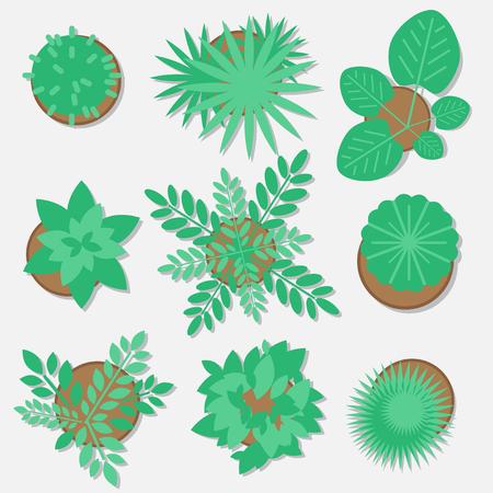 Het verzamelen van planten voor webdesign, vlakke stijl Stock Illustratie