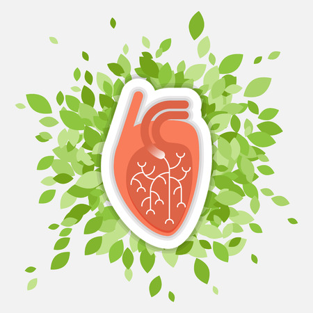 Flat illustration - human heart with green folliage, concept about health and healthy environment