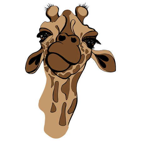 Giraffe illustration. Cute giraffe in brown colors, portrait of giraffe Stock Photo