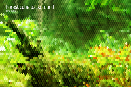 Forest geometrical backgorund with 3d hexagon and squares forms