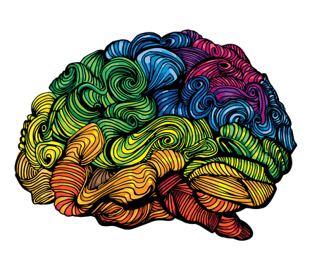 gray matter: Brain Idea illustration. Doodle vector concept about human brain. Creative illustration with colored brain and grey matter