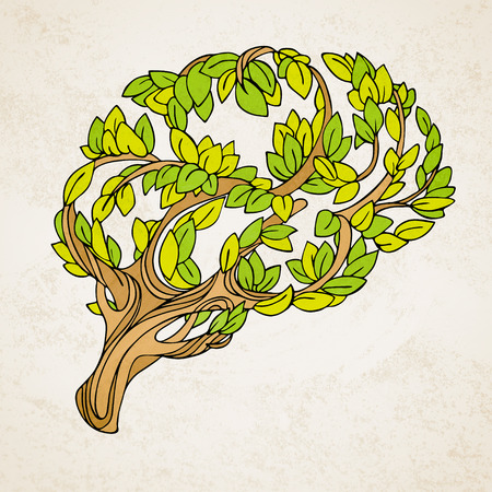 Healthy brain  concept illustration. Tree and leaves in form of brain. Hand draw helthy conceptual brain illustration Stock Photo