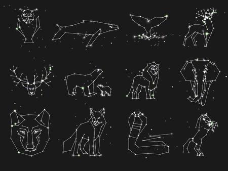 暗い夜空に星座を動物のコレクションです。ラインと星野生動物。