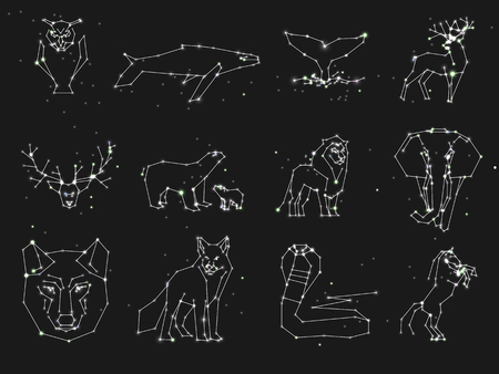 Collection of animals constellation on dark sky. Wild animals with line and stars.