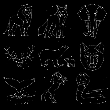 Collection of hand draw animals constellation on dark sky. Sketched wild animals with line and stars, horoscope style. Constellation animals for cards, elephant, owl, wolf and other.