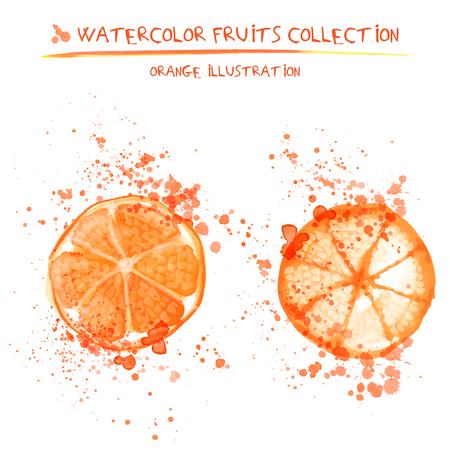 Seto of watercolor oranges vector illustration. Splashed hand draw orange isolated on white background, art vector citrus objects. Lemonade and orange juice element Ilustração
