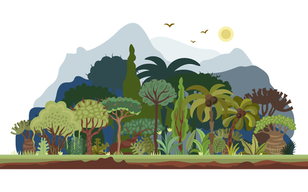 Vector tropical forest landscape with palms and other tropical trees. Tropical rainforest panoramic illustration. Flat vector design of tropical forest landscape in light green summer colors, isolated on white background Illustration