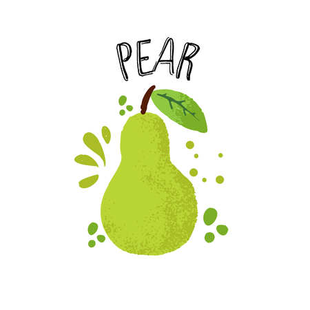 Vector hand draw pear illustration. Green pear with juice splashes isolated on white background. Textured green pears sketch, juice fruit with word Pear on top. Fresh silhouette fruit of Pear with spl