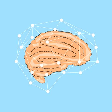 Vector flat illustration of brain with network of line around it. Cerebral concept, Human organ icon.