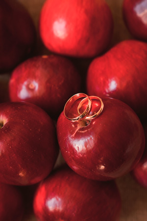 fall decoration: Two gold wedding rings on a red Big Apple. Autumn Wedding. Stock Photo
