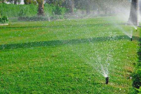 spaying: Lawn sprinkler spaying water over green grass