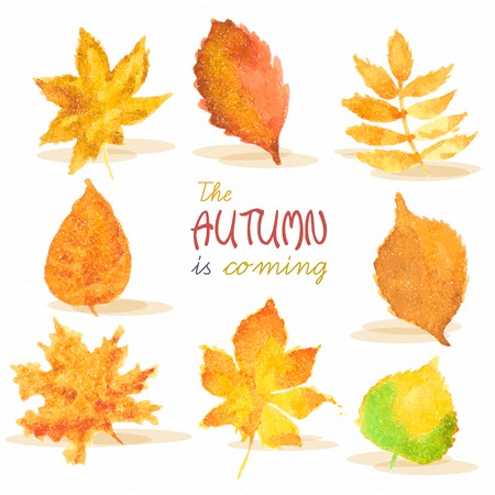 rains: Season of rains. Greeting card. Fall. Watercolor autumn red, yellow, green leaves on paper background.