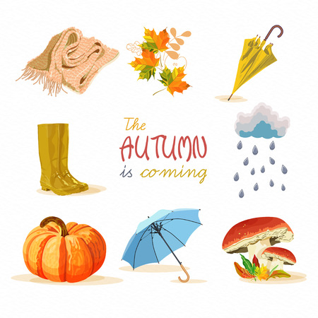 Set design element of fall in cartoon style Vector