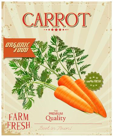carrots: Farm fresh Carrot poster design in vintage style. Vector illustration. Illustration