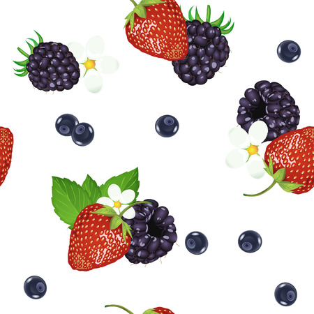 drupe: Seamless pattern of realistic image of delicious ripe berries. Vector strawberries. Blueberries. Blackberries.
