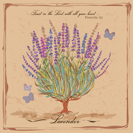 provence: Lavender. Flowering shrub. Provence. French retro style. Vintage card in rustic style for interior decoration.