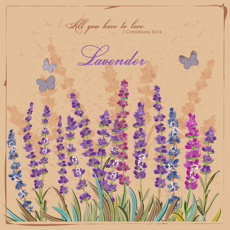 lavender flower: Lavender field. Card in vintage French style. Provence. Illustration