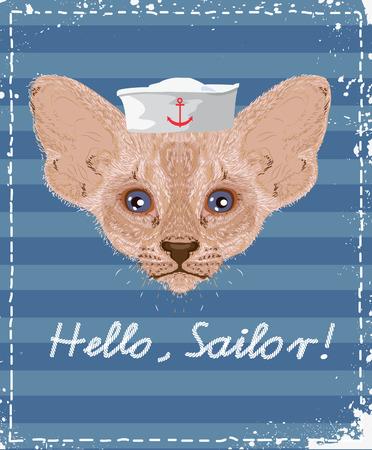 anchor man: Cat sailor