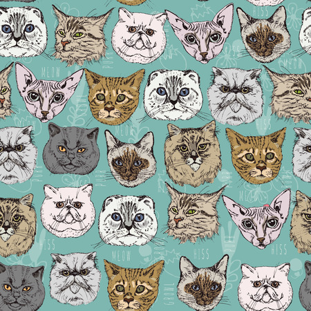 Seamless pattern with cats Siamese, British, Siberian, Persian, Scottish Fold, Maine Coon, Bengal, Sphynx in doodle hipster style. Ilustração