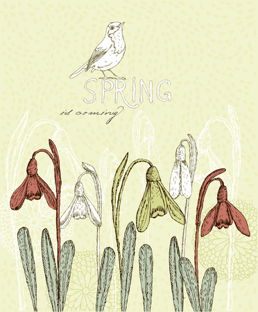 march 8: Spring flowers, Snowdrops Greeting Card for March 8