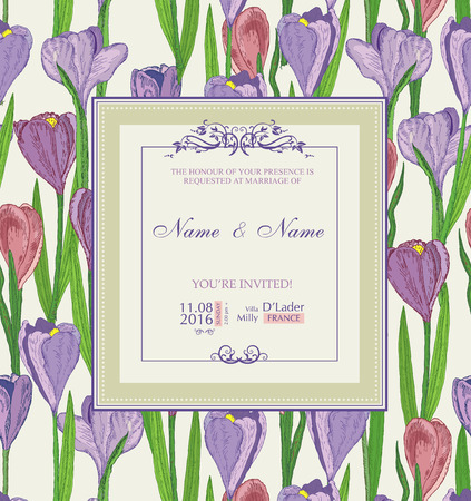 crocus: Wedding invitation with flowers. Spring crocus. Illustration