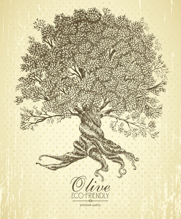 tree illustration: Olive tree with roots on rough background. Arbor day poster in vintage style.