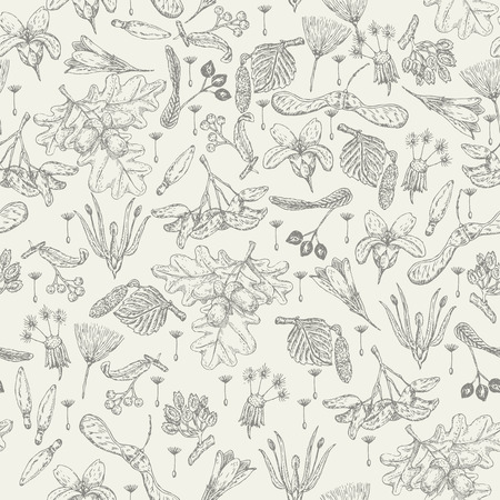 Seamless pattern with realistic seeds, plants, flowers in doodle design. Hipster style. Vintage background