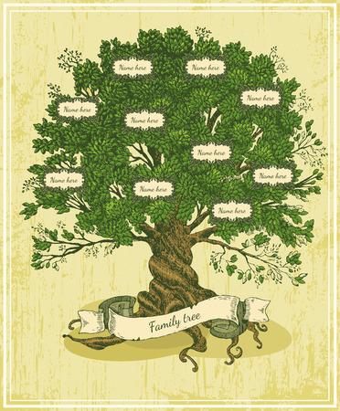가족: 오래 된 종이 배경에 족보 나무. 빈티지 스타일의 패밀리 트리. 유래