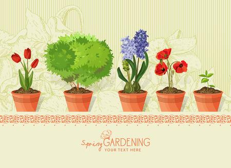 ベージュ色の背景上の粘土の鍋で春の植物および花